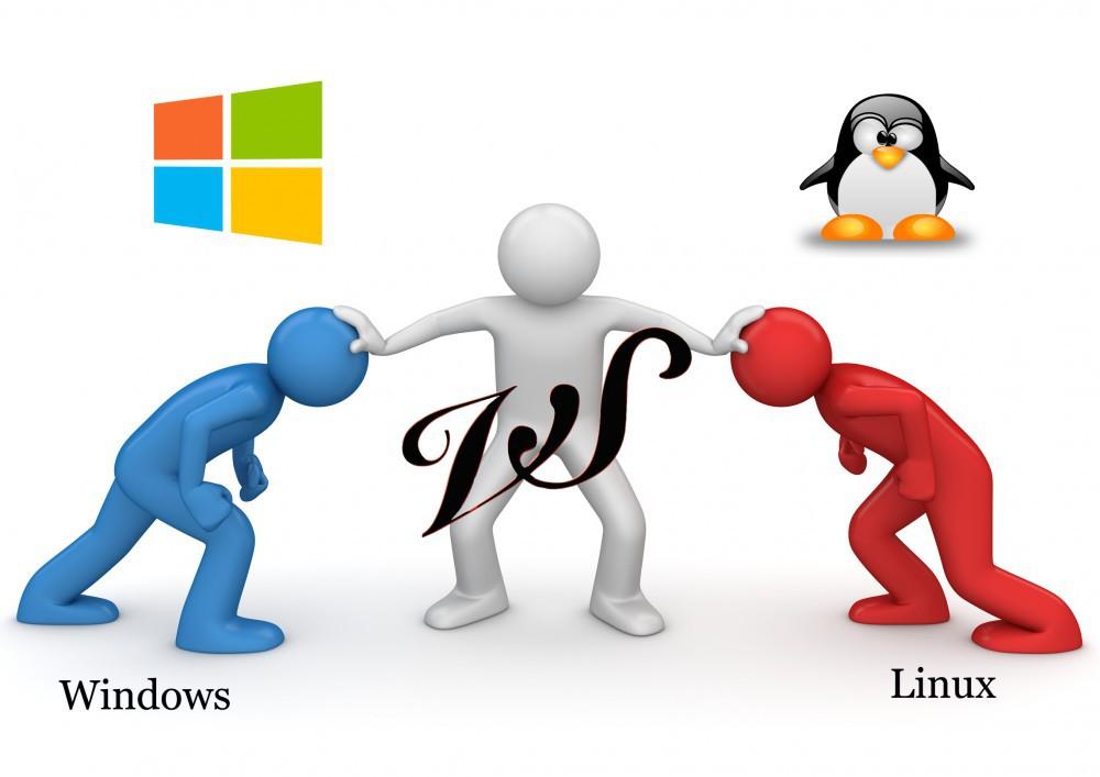 Windows vs Linux : Which one OS is Best for your Business?